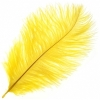 "Ostrich Drab Feathers 6-8"" Premium Quality Yellow"